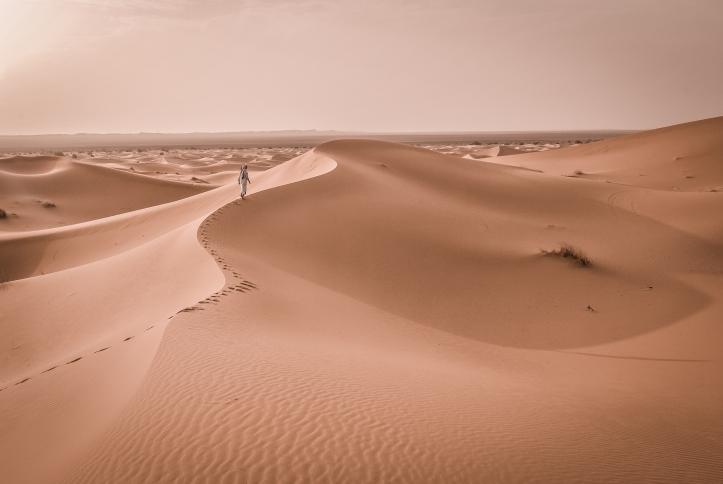 lost in the desert.jpg